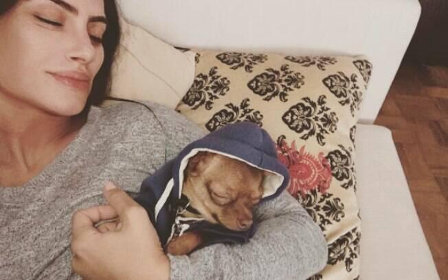 Cleo Pires e seu pequeno chiuaua na cama da atriz. Foto: Reprodução/Instagram