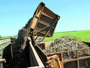 Safra. Produção de álcool aumentou e usinas reduziram o preço do litro em cerca de R$ 0,22