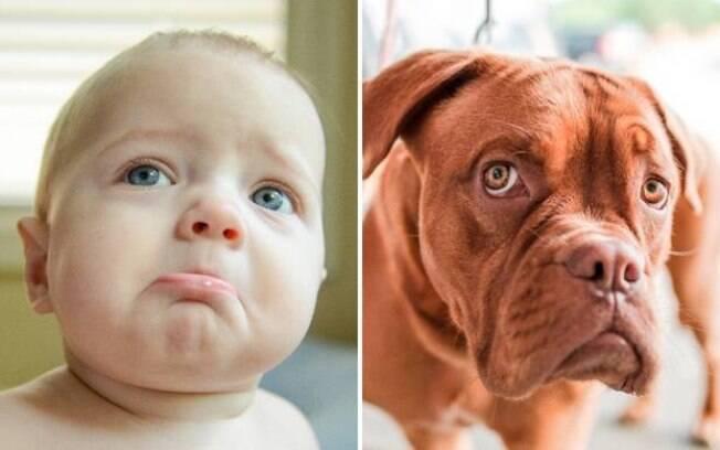 Um bebê e um cachorro bem tristes. :(