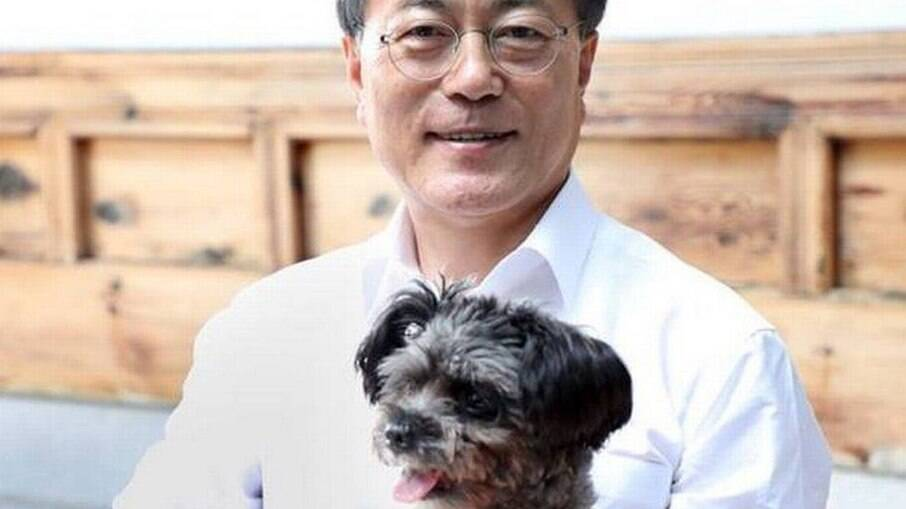 Presidente da Coreia do Sul sugere proibir consumo de carne de cachorro no país