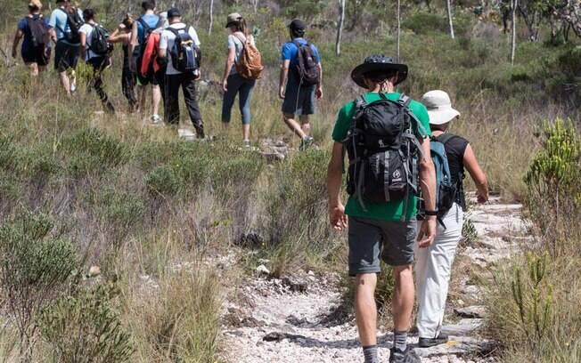 Trilha dos Saltos, 12km de caminhada pelo Cerrado de Altitude.
