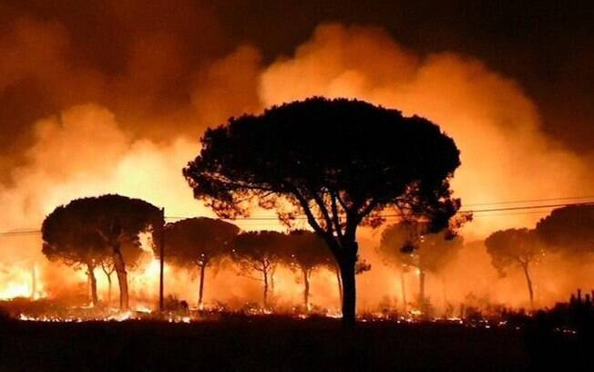 Incêndio na região sul da Espanha ameaça o Parque Nacional de Doñana, que é uma área de preservação ambiental