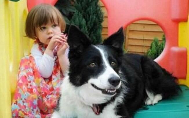 Cachorra conseguiu farejar câncer em menina de 3 anos.
