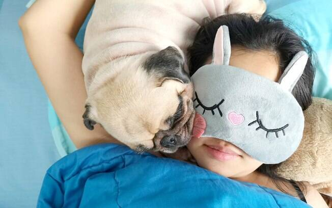 Estudo mostra que mulheres dormem melhor ao lado de cachorros que de parceiros