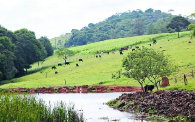 Índice pluviométrico dos reservatórios fecham em baixa no mês de maio