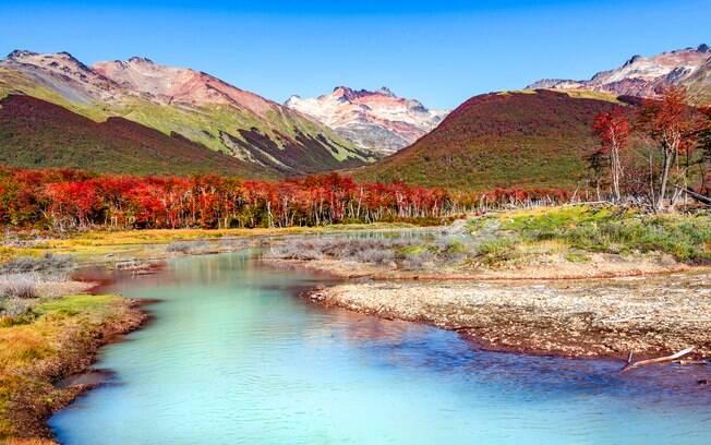 O que fazer em Ushuaia: o Parque Nacional da Terra do Fogo tem vistas de tirar o fôlego, seja pela fauna ou pela flora