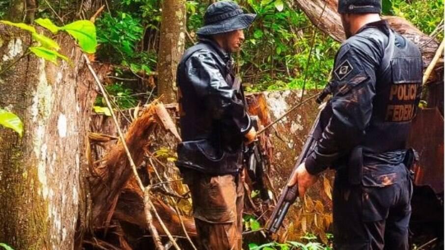 Desmatamento: PF diz que abrirá inquérito se militares abandonarem operação contra madeira ilegal
