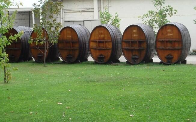 O tour na maior vinícola chilena inclui visita às adegas e degustações de vinho
