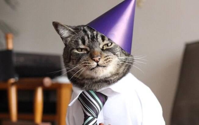 Chico em seu aniversário