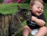 Como fazer para que felinos e crianças tenham uma boa relação