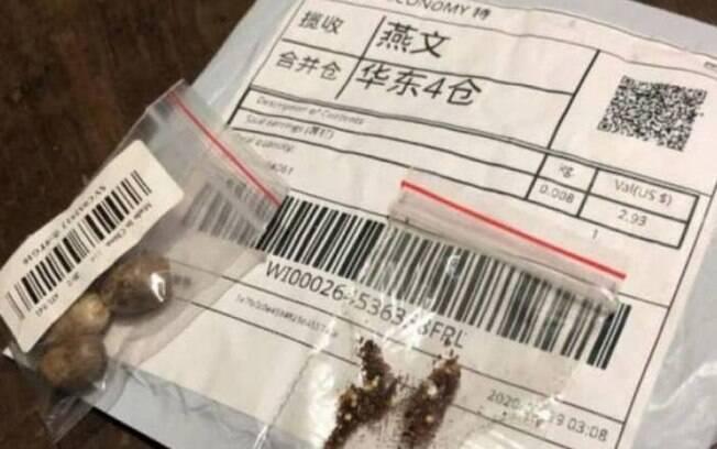 Governo encontra fungos, ácaros e plantas daninhas em sementes misteriosas