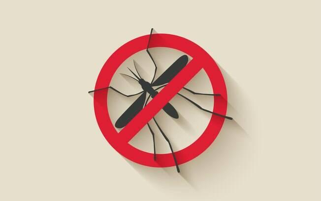 Todo mundo quer distância do mosquito Aedes aegypti, mas para o repelente ter o efeito desejado é preciso passá-lo adequadamente