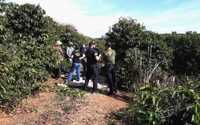 Fazenda de café certificada pela Starbucks em Minas Gerais é alvo de ação contra trabalho escravo