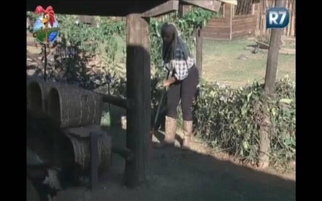 Monique limpa o galinheiro enquanto conversa com as aves