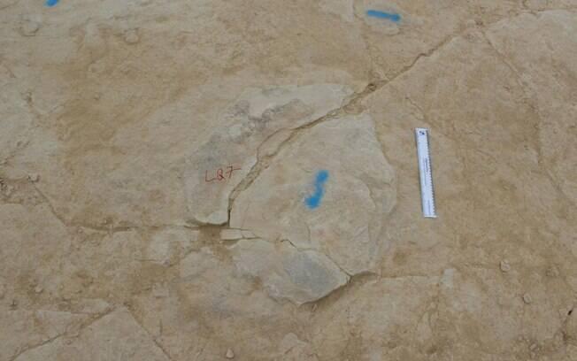As pegadas de dinossauro são muito raras e foram documentadas usando uma tecnologia 3D da polícia britânica