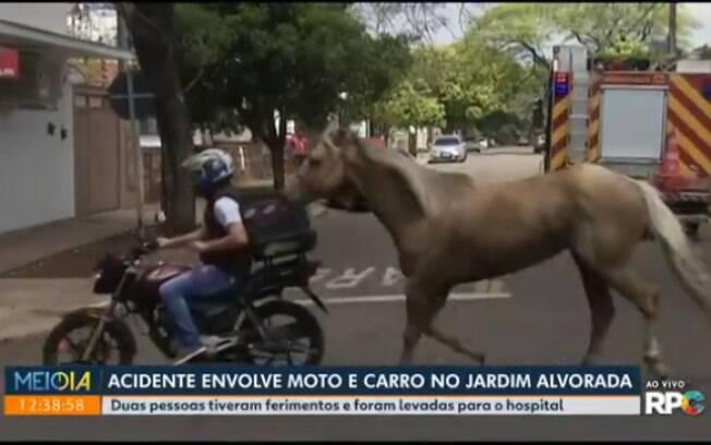 Equipe flagra motoqueiro puxando cavalo em Maringá