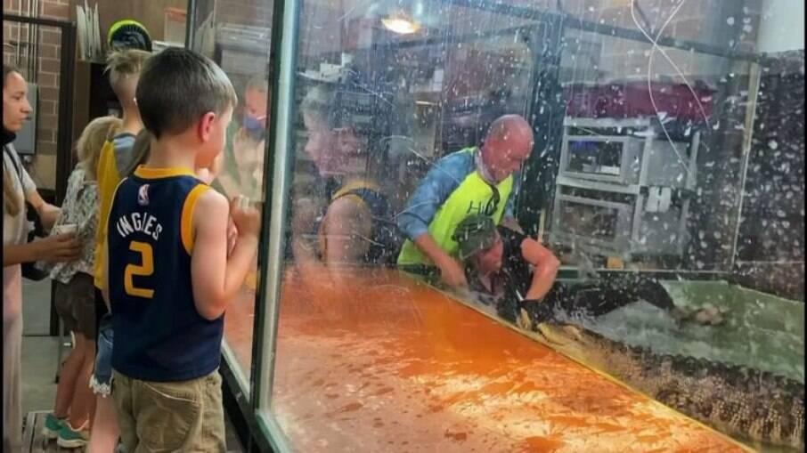 Jacaré arrasta cuidador para dentro de tanque em festa infantil nos EUA