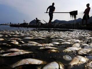 Água contaminada ameaça atletas