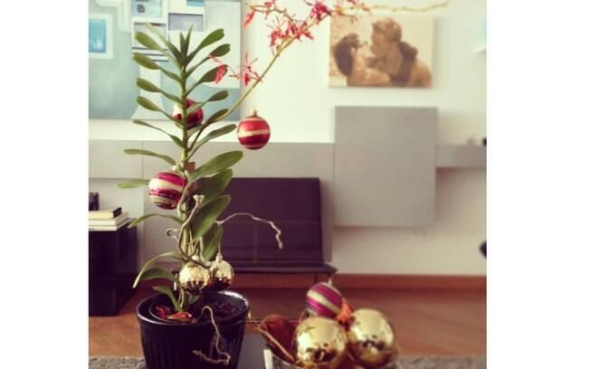 A planta que já temos em casa, nesse caso com belas e delicadas flores vermelhas, dá o tom e a inspiração para os enfeites de Natal