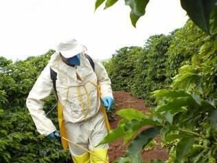 """Dependendo do estágio de infestação da praga na lavoura, benzoato é essencial"""", explica o ministro Neri Geller"""