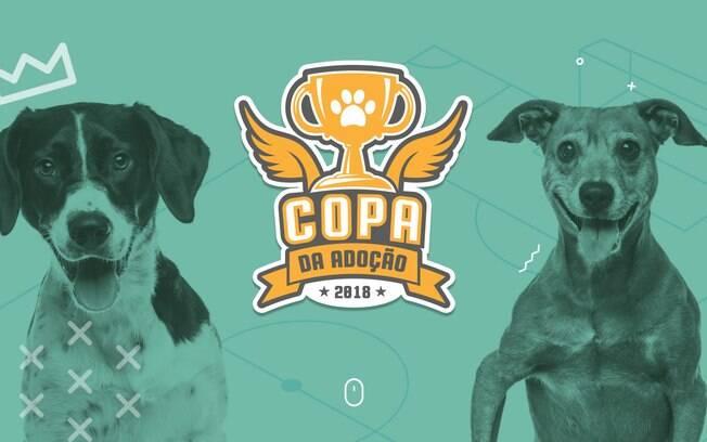 DogFy, em parceria com a ONG Ampara Animal, cria a
