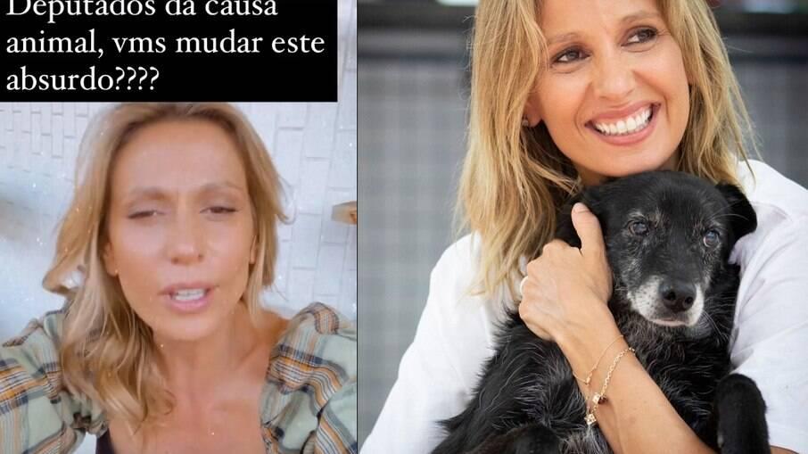 Luisa Mell cobra posicionamento de empresa aérea após morte de filhote de cachorro