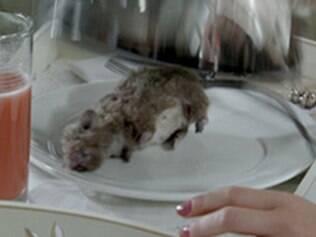 Patrícia assusta ao abrir o café da manhã e se deparar com um rato morto