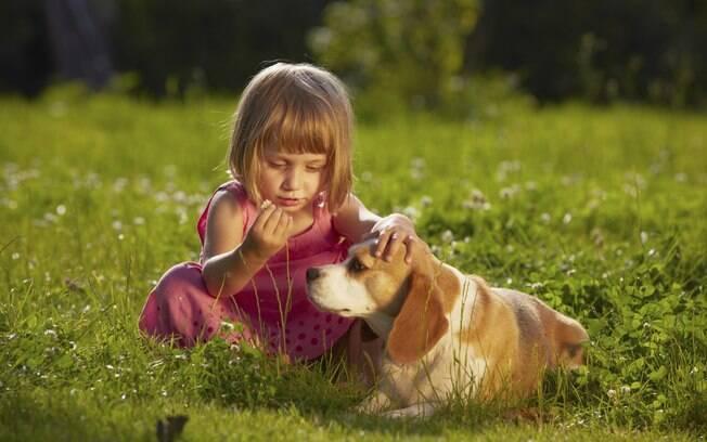 Especialista sugere que para auxiliar o desenvolvimento da imunidade de seu filho, o melhor é deixá-lo ter contato com animais, terra, grama e areia da praia, sem esquecer de lavar as mãos depois da brincadeira