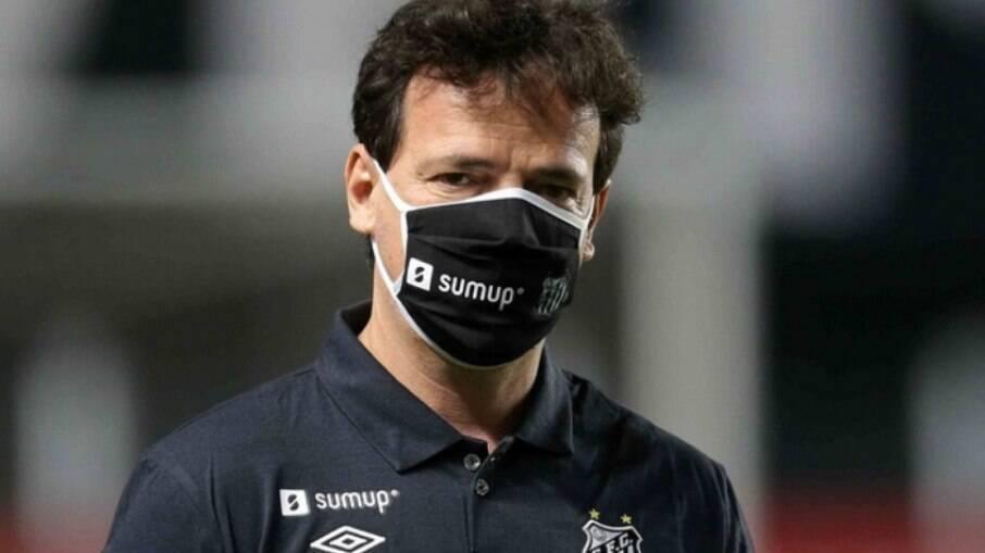Fernando Diniz, técnico do Santos