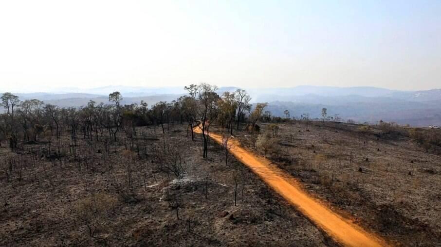 O incêndio devastou 80% do local