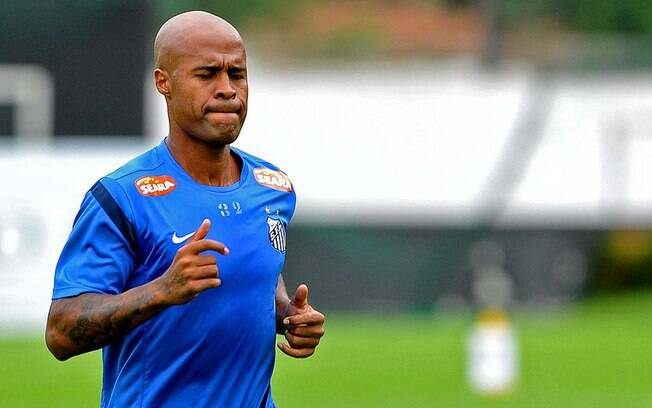 Marcos Assunção virou ídolo no Palmeiras, mas  neste ano acertou com o Santos