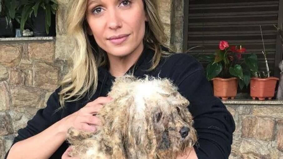Luisa Mell desabafou sobre violência médica