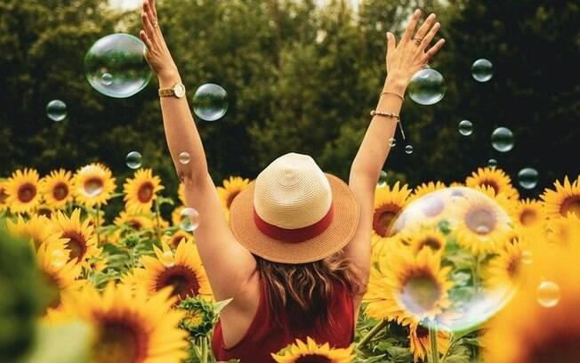 7 ervas poderosas para se proteger de energias negativas