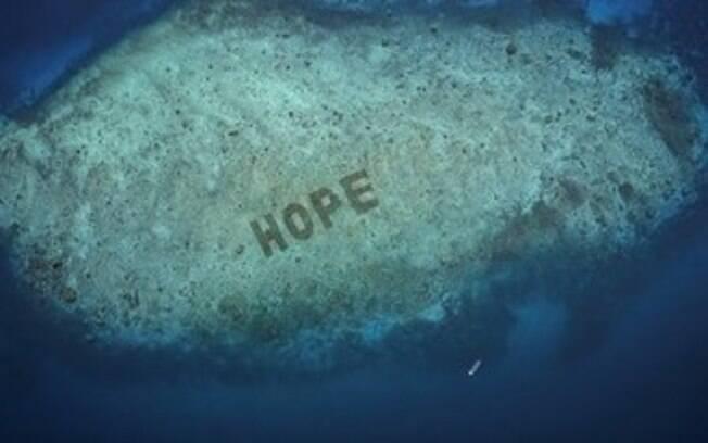 SHEBA® divulga o Recife Hope: anúncio do maior programa de restauração de corais do mundo