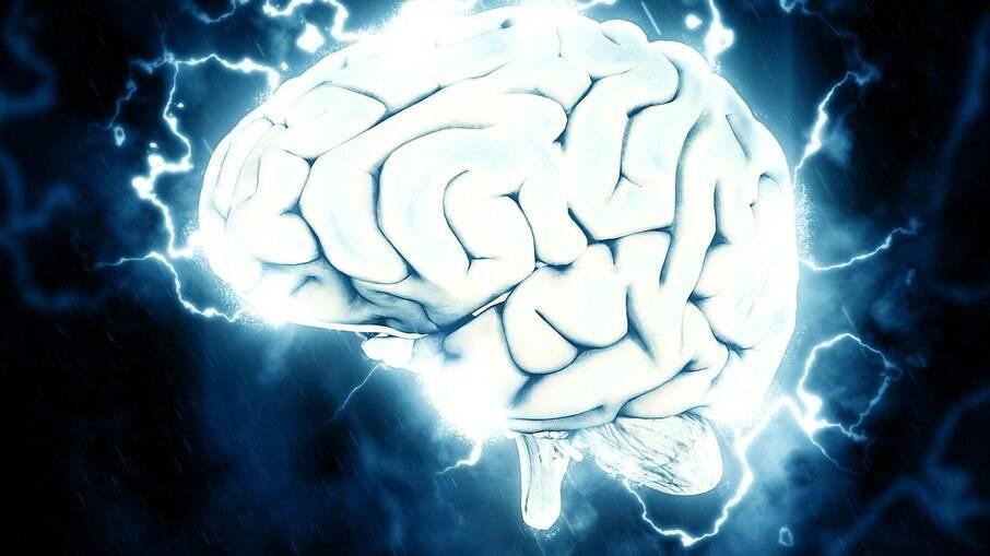 Além de crescerem, células cerebrais desenvolvem tentáculos após a morte do órgão