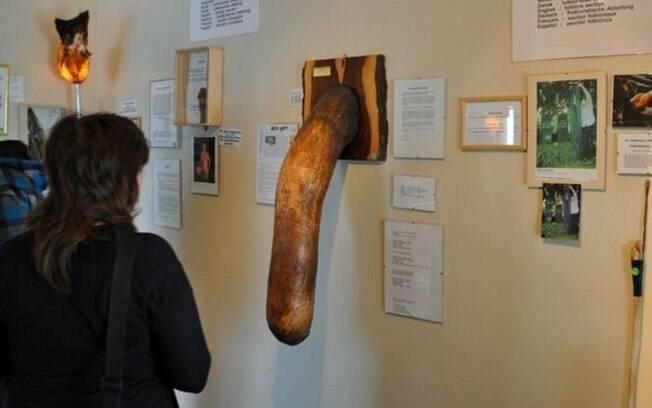 Inaugurado em 2011, o Icelandic Phallogical Museum, que abriga 282 tipos do órgão masculino de 93 espécies