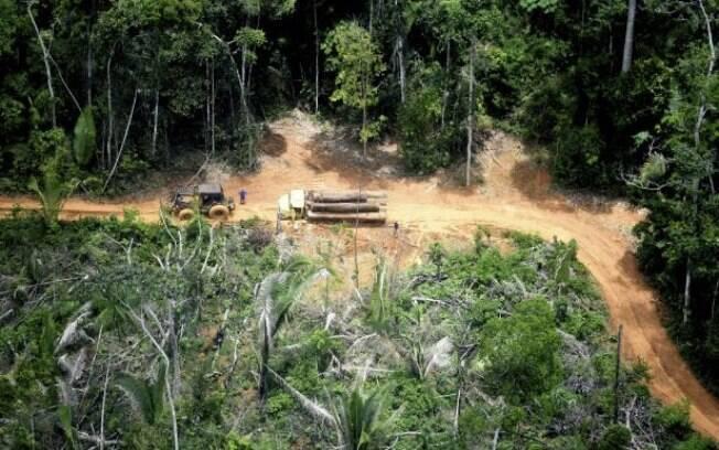 Trator e caminhão foram flagrados carregando madeira retirada ilegalmente da TI Karipuna em 2019