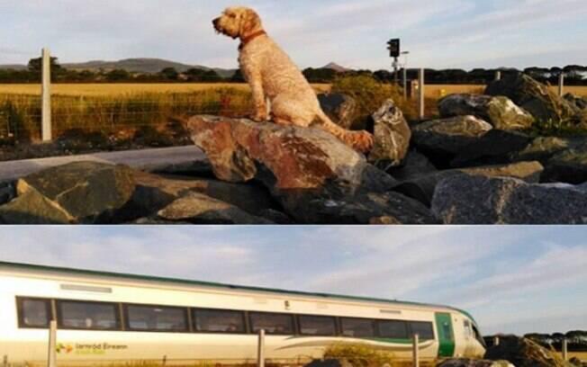 Hobbes esperando pelo trem