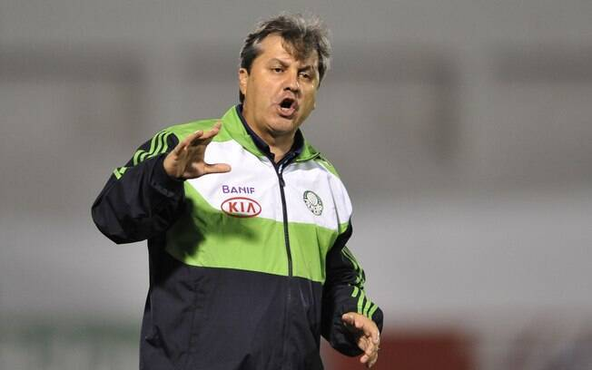 Gilson Kleina orienta o time do Palmeiras