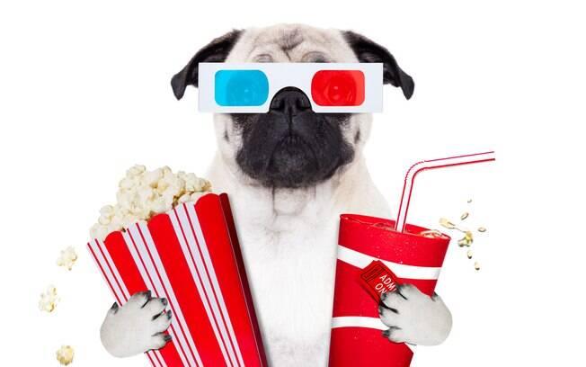 Cachorros poderão ir ao cinema em sessões mensais no Rio de Janeiro