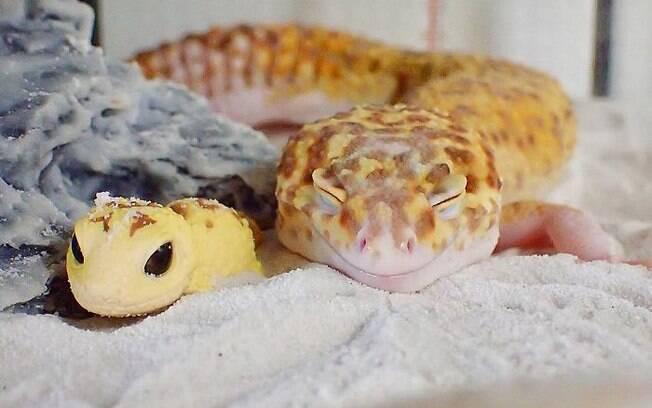 Esse lagarto sorridente com seu mini lagarto farão seu dia!