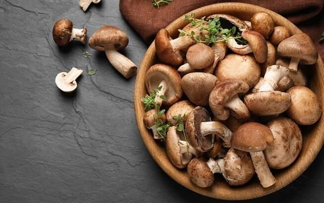 Cogumelos podem ser aliados na prevenção contra o câncer