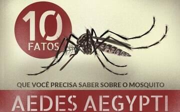 Panorama da dengue, chikungunya e zika vírus no Brasil, seus sintomas e as formas de prevenção