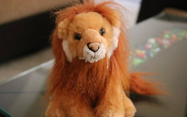 Casal utilizou leão de pelúcia como advogado durante julgamento por acreditar que Jesus Cristo estava no brinquedo