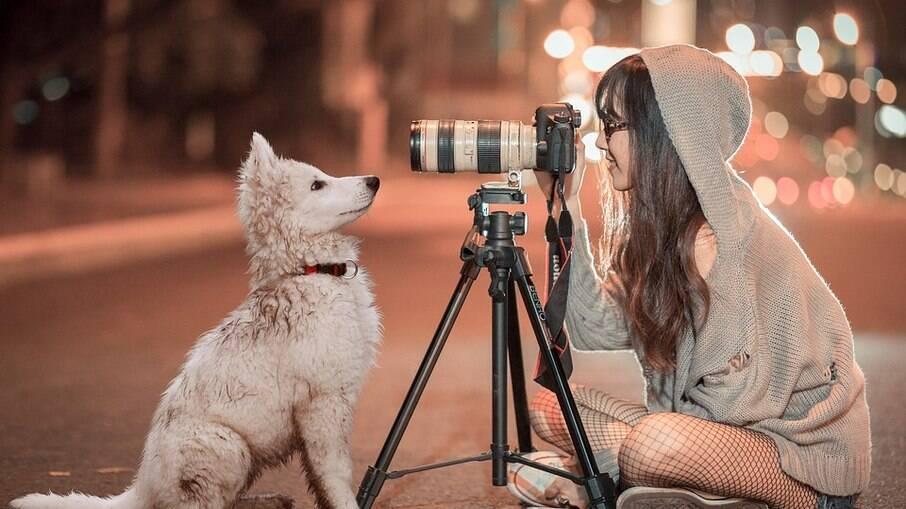 Tutores podem transformar seus pets em celebridades do nicho nas redes sociais, criando parcerias com marcas do ramo
