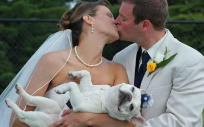 Dicas para que seu cão possa participar de seu casamento