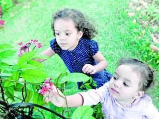 Natureza. No Instituto Inhotim, em Brumadinho, na região metropolitana, oficina divulga ciclo de vida dos vegetais