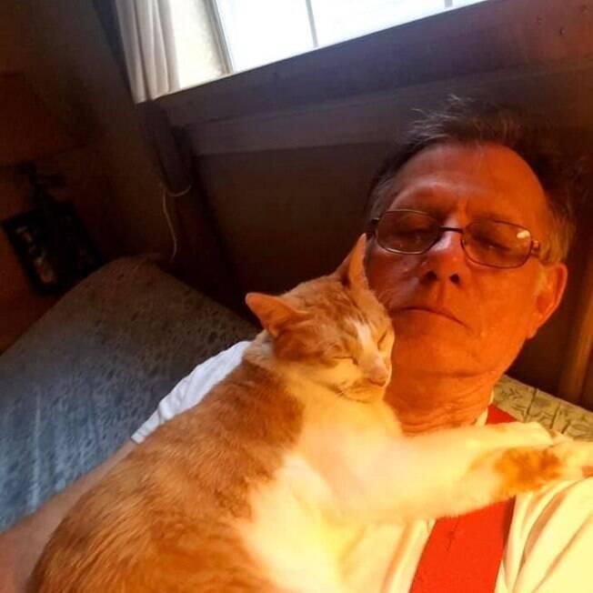 gato e idoso