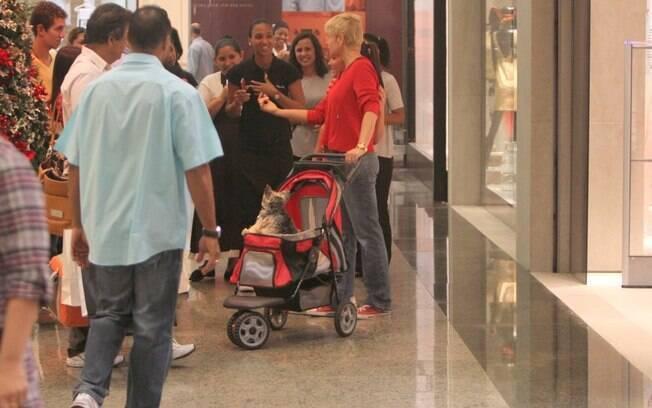 Xuxa Meneghel em um shoppind da Barra da Tijuca