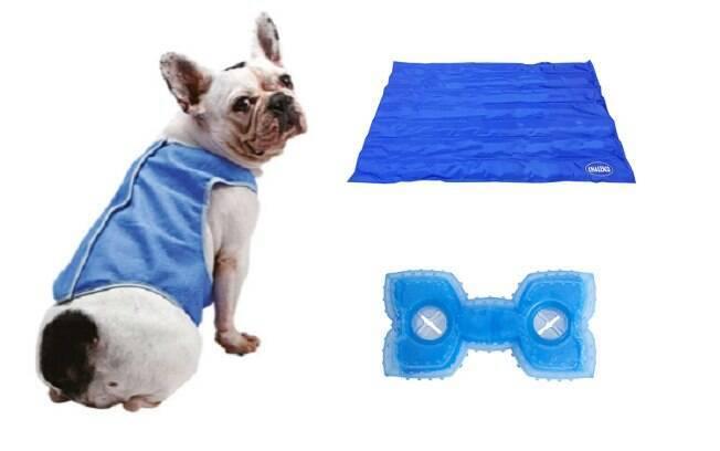 Colete gelado, tapete gelado e osso gelado são itens que podem ajudar a diminuir o calor dos cães